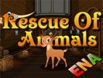 Escape Games Rescue Of Animals